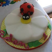 Ladybug And Daisy Cake I used the petal pan for this and carved out the petals for the daisy. Ladybug is cake cut out with large round cutters, then carved into a...
