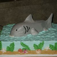 "Shark!! I was asked to do a cake, fairly last minute that had a shark theme. So here it is! I did a 1/4 sheet, and used a 6"" square to sculpt..."