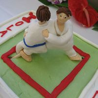 Judo   The two judo players are made out of fondant mixed with tagacanth gum. The cake is decorated with bc.