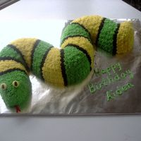 Snake Cake This was for a 4 year old boy. I made it by making 2 bundt cakes and peicing them together, then covering with stars.