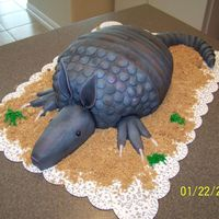 Armadillo Cake Red velvet armadillo cake. Body is cake, everything else is fondant. Thanks for looking!