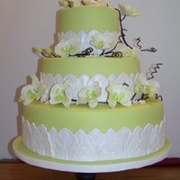 Orchid Cake Lime green fondant covered cake w/orchids and border trim.