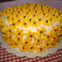 Black-Eyed Susans Mini chocolate morsels made the perfect centers for my Black-Eyed Susan cake.