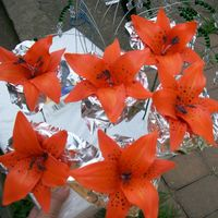 Tiger Lilies   they are not botanically correct, but they are still pretty