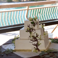 Cake With Branch Done for a bride with a very natural theme.