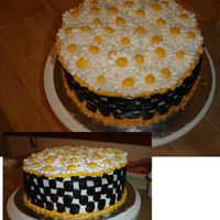 Daisy And Checkerboard Chocolate and Vanilla checkerboard cake (well I tried, i don't htink it came out) Vanilla BC.Thanks for all the help everyone!
