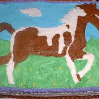 Horse-Lover's Birthday Chocolate cake with caramel filling. I used a buttercream transfer for the outline of the horse and then filled it in freehand to give it...