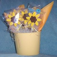 Get Well Bouquet this is a small bouquet I did for a friend