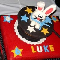 Rabbit In Magic Hat (Put Together) Another pic of previous cake put all together