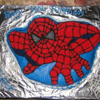 Spiderman Funfetti cake in Wilton Spiderman pan, BC icing for my Son's 4th Birthday