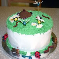 1St Bug Cake  I went crazy with the fondant/gumpaste. The flowers and wings are gumpaste. The bugs are all fondant. The anthill is just frosting covered...