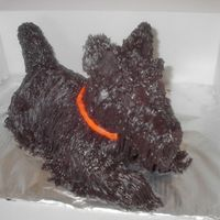 Scottish Terrier I used the stand up lamb for the base and added the nose, ears and tail. Iced in buttercream with grass tip - lots of black!