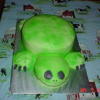 Turtle This is the turtle I did with the wilton spray.