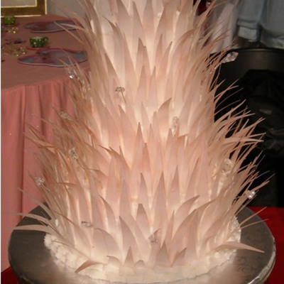 Feather Cake