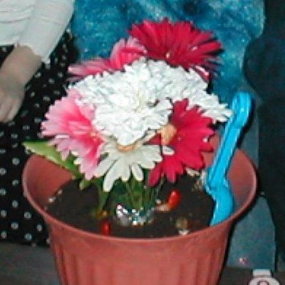 Flower Pot Cake Photos