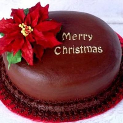 Chocolate Cake With Poinsettia on Cake Central
