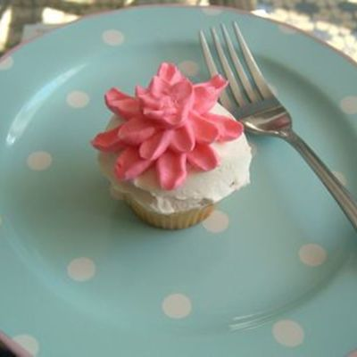 Crysanthemum Cupcake