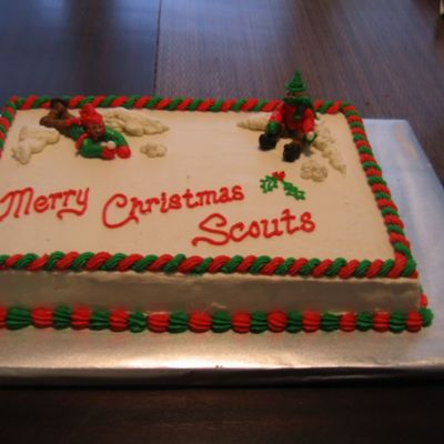 Scout Christmas Cake