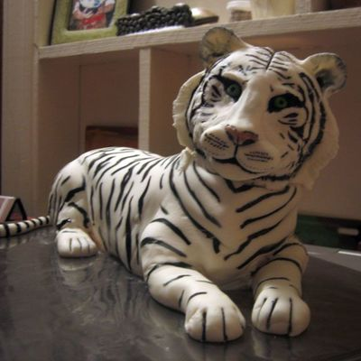 White Tiger Front View