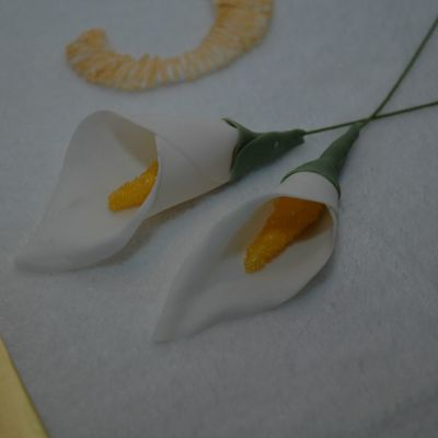 First Time Gumpaste Calla Lily on Cake Central