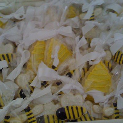 Bumble Bees And Beehives
