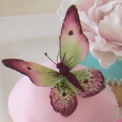 Gumpaste Butterfly on Cake Central