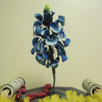 Bluebonnet, First Attempt