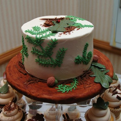 Forest Themed Wedding Rehearsal Cake And Cupcake Tower