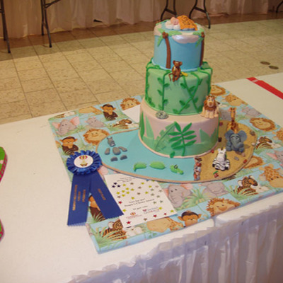 First Place - Children's Miracle Network Cake Show
