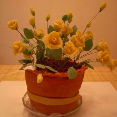Terracotta Pot Of Roses