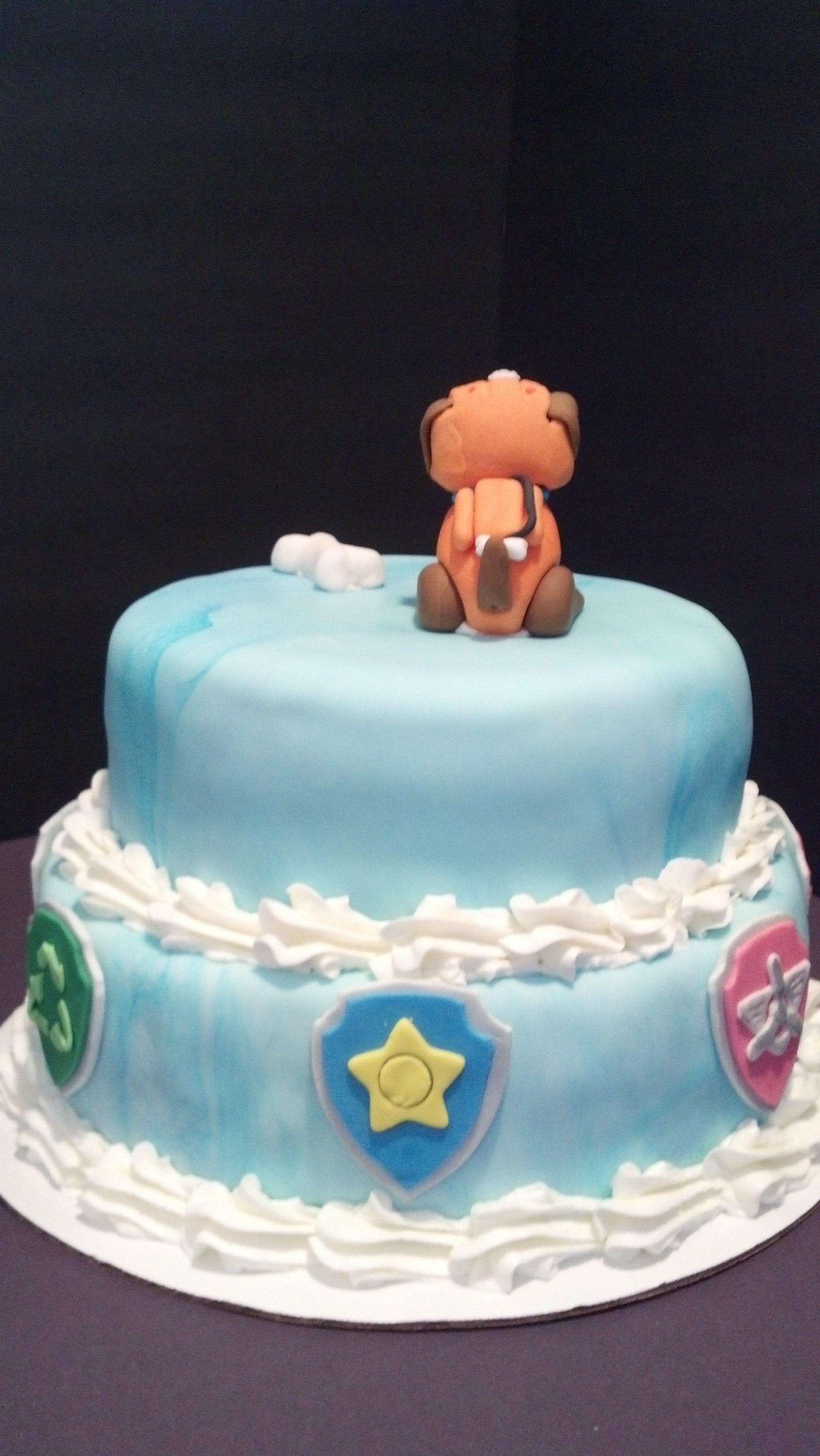Paw Patrol Zuma Cake Cakecentral Com
