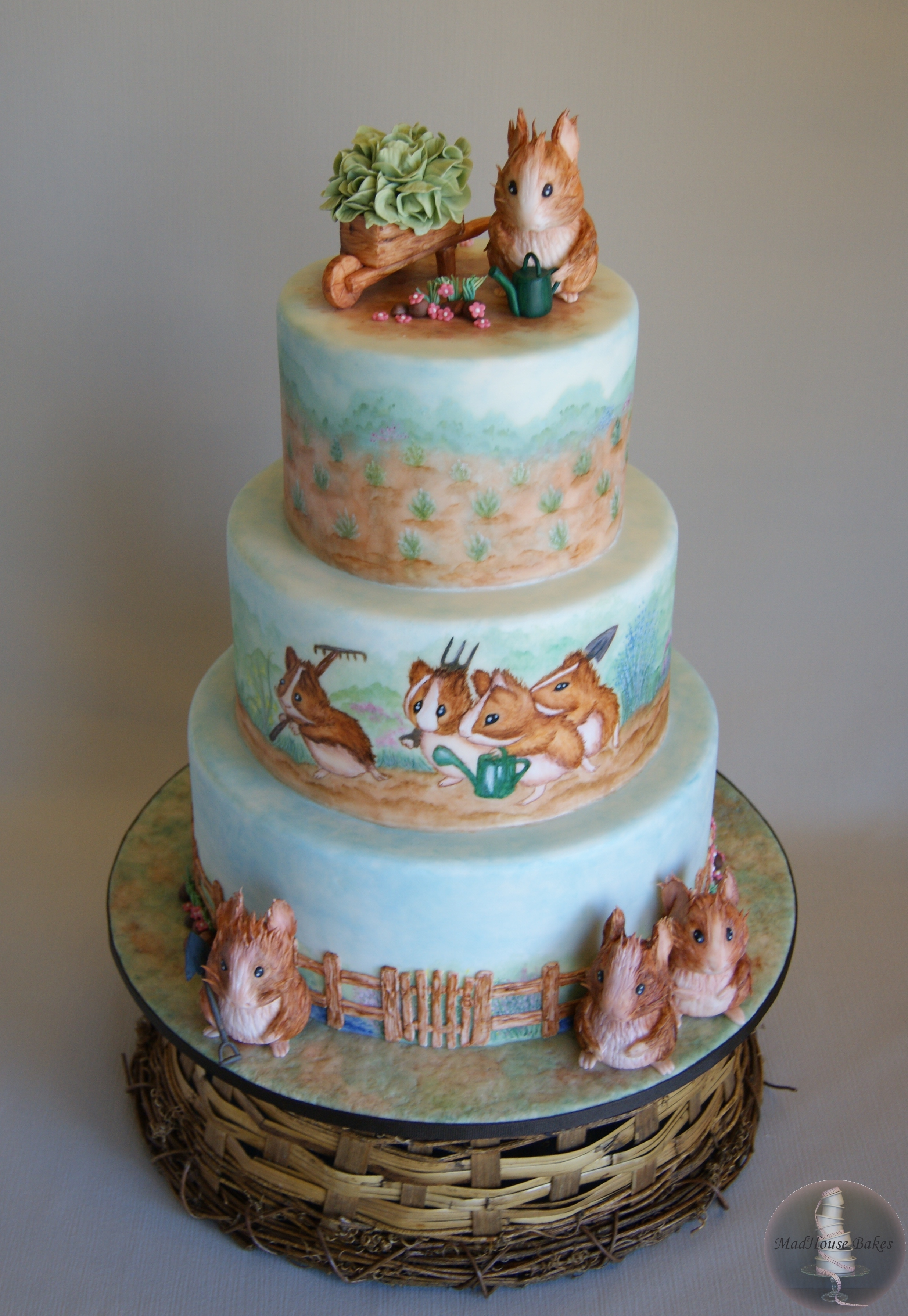 Beatrix Potter Guinea Pig Cake Cakecentral Com