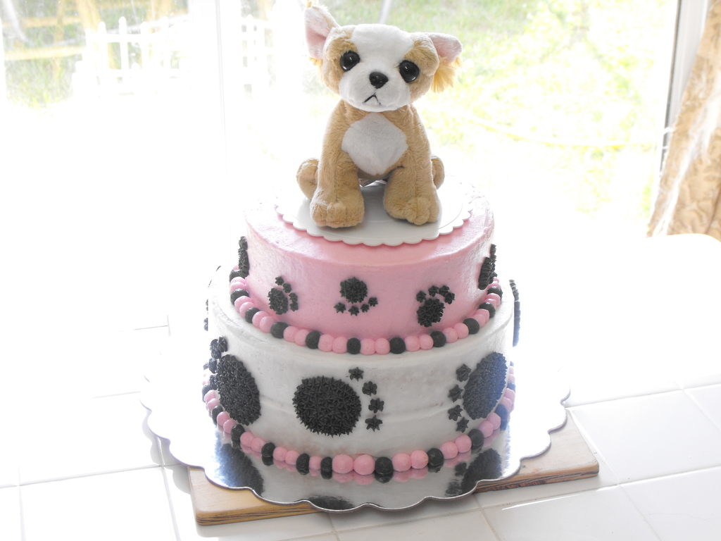 Pleasing Beverly Hills Chihuahua Cake Cakecentral Com Funny Birthday Cards Online Unhofree Goldxyz