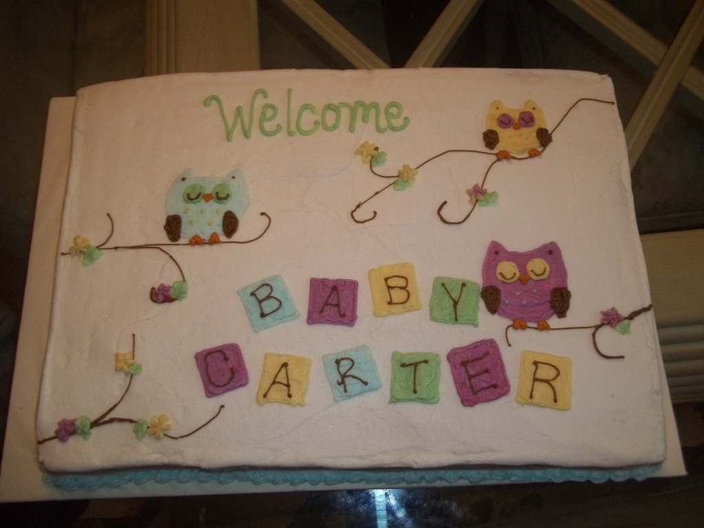 Baby Owl Baby Shower Cake Cakecentral