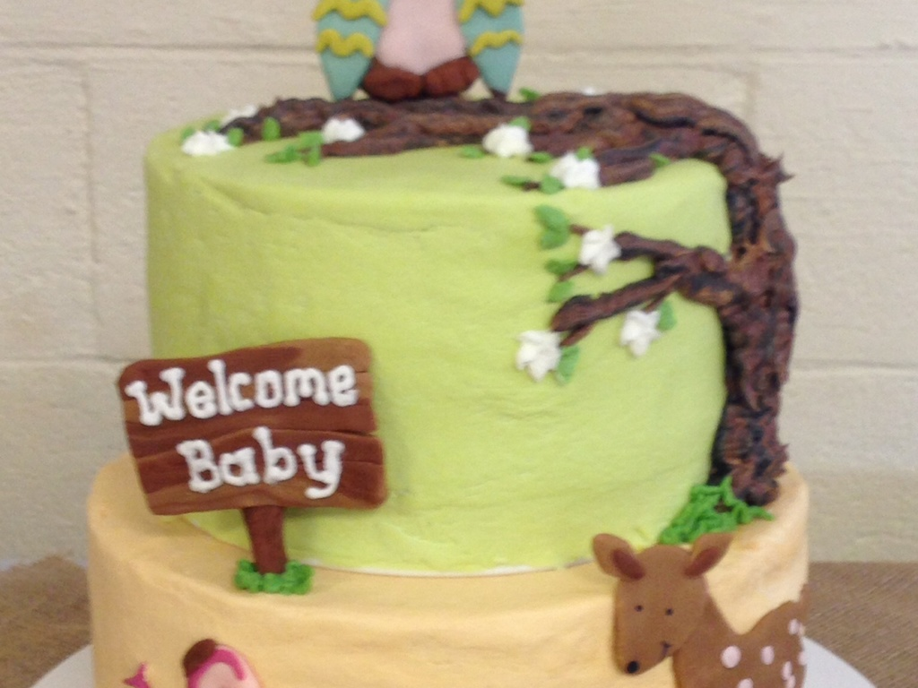 Woodland Animals Baby Shower Theme Cake Cakecentral Com