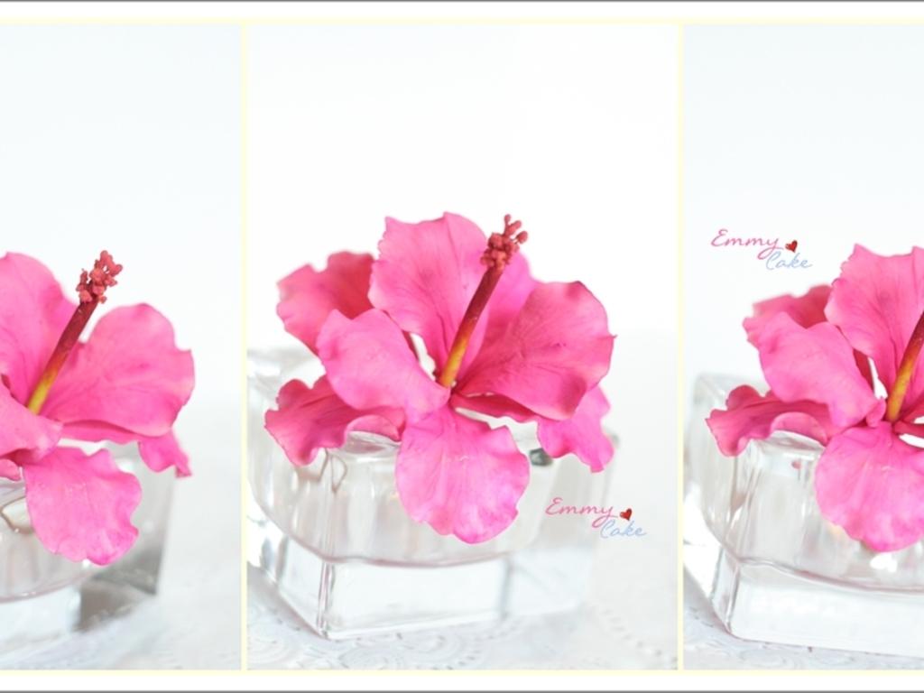 Gumpaste hibiscus cakecentral izmirmasajfo