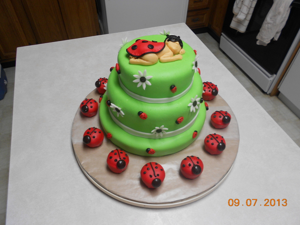 Lady Bug Baby Shower Cakes Baby Shower Music Mix Cheap Baby Shower