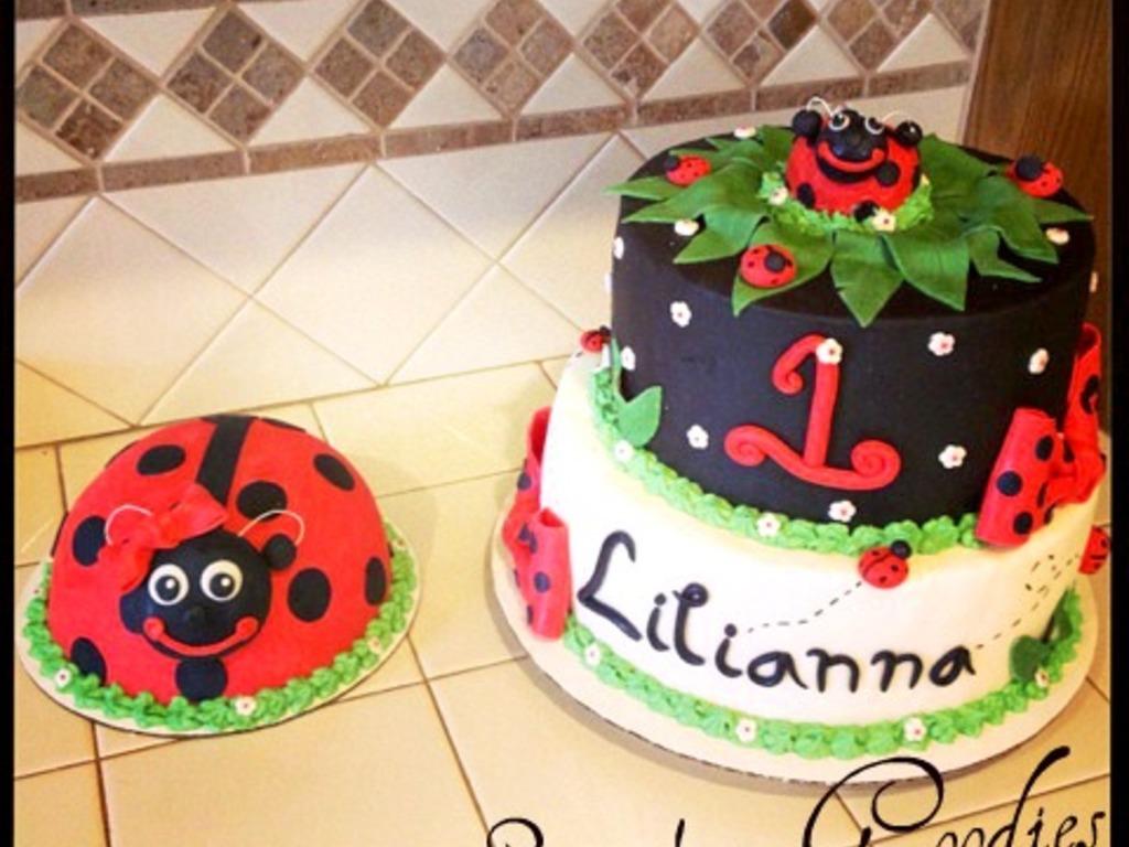 Ladybug 1St Birthday Cake And Smash