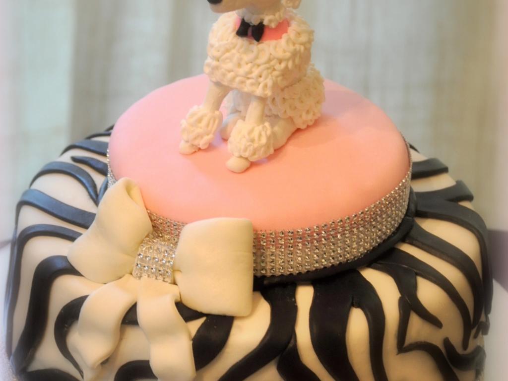 Sensational Poodle Birthday Cake Cakecentral Com Funny Birthday Cards Online Aeocydamsfinfo