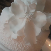 Fantasy Sugar Flower   3 tier pale pink wedding cake with cornelli lace and oversize gumpaste fantasy flower.