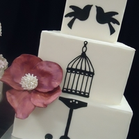 Bird Cake   Black and white cake