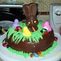 Easter_Cake.jpg this is a Easter cake i made its a chocolate bundt cake with mini midnight dark chocolate bars melted in it. It was just a quick decision...
