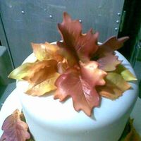 Leaves Topper