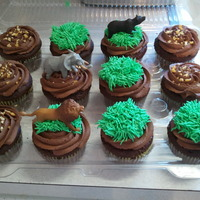 Zoo Animal Cupcakes For my friend's son's birthday