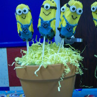 Minions Minions for a birthday party.