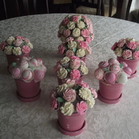 Mini Cupcakes And Pops For Shower   Mini cupcakes and cake pops for wedding shower. Color theme pink and white