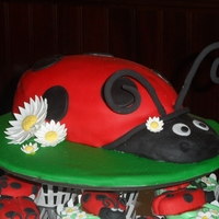 Ladybug Cake And Cupcakes Ladybugs on cupcakes (including antenna) are handmade out of fondant