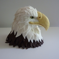 Eagle Made this eagle to place on top of another cake for an Eagle Scout ceremony. The head is made of RCTs covered in chocolate candy clay...