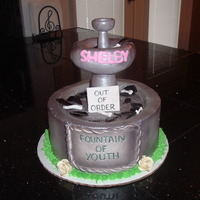 "Fountain Of Youth Cake 8"" white cake covered in BC, sprayed with silver luster. Top of fountain is fondant."