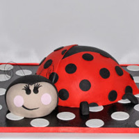 Lady Bug Birthday Cake Lady Bug Birthday Cake